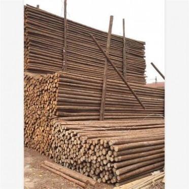 蘇州杉木桿_綠化杉木桿規格_1米到8米可定制